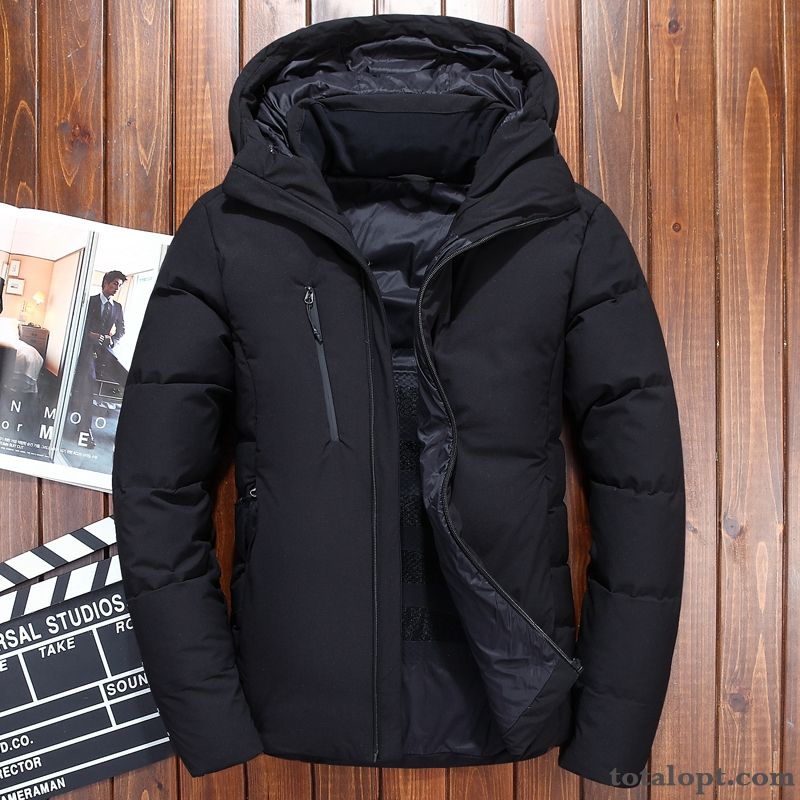 Cheap Short Thickening New Black Men's Winter Clothes Trend Fashion Coat Down Jacket Hooded Coffee Dull Black