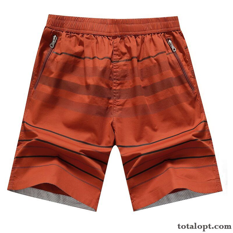 86ab54537b3 Cheap Summer Red Trend Loose Large Size Leisure Men s Pure Cotton Short  Pants Beach Ivory Oyster