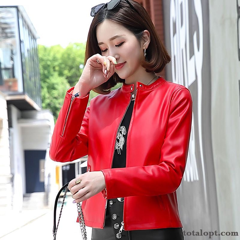 Coat Short Jacket Round Neck Europe Slim Autumn Thin Leather Red New Spring Women's Trend Powderblue Navy Blue Sale