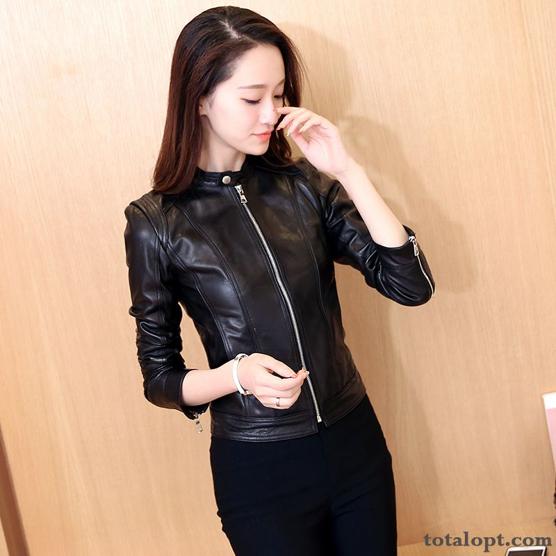 Thin Coat Short Women's Autumn Shorts Stand Collar Jacket Pu Slim New Leather Europe Springgreen Grey Black Online